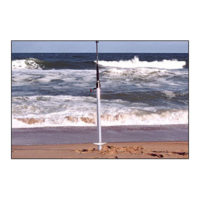 Sand Spike 50 inch Deluxe